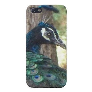 The Peacock Case For iPhone SE/5/5s