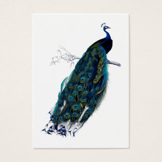 The Peacock Collection Gift Tag