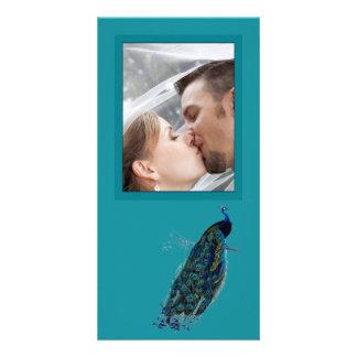 The Peacock Collection Wedding Photo Photo Cards