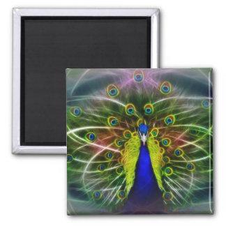 The Peacock Dreamcatcher Magnet
