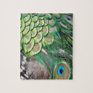 The Peacock Garden Jigsaw Puzzle