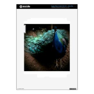 The Peacock iPad 3 Skin
