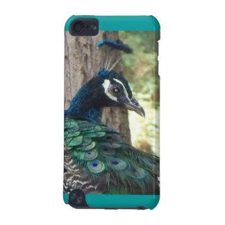The Peacock iPod Touch 5G Case