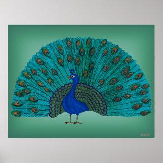The Peacock Print