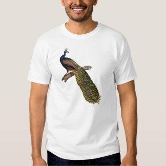 The Peacock Symbolism T-shirt