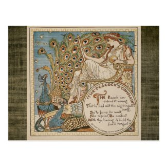 The Peacock's Compliment Antique Postcard