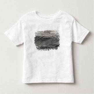 The Peak of Teneriffe, Sante Cruz Toddler T-shirt
