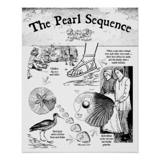 The Pearl Sequence Poster