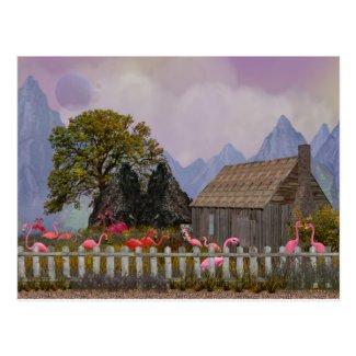 the penfield pink plastic flamengo sanctuary postcard