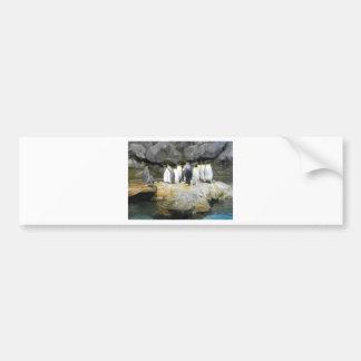 The Penguin Story Bumper Sticker