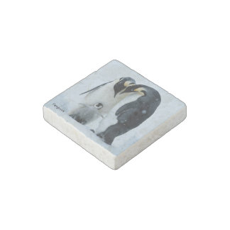 The Penguins - Marble Stone Magnets, Individual Stone Magnet