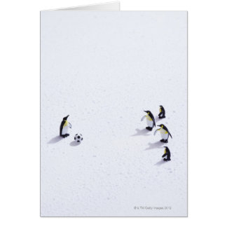 The penguins playing soccer card