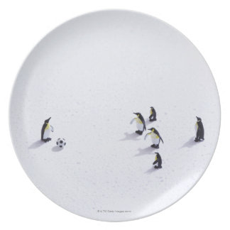 The penguins playing soccer plate