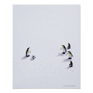 The penguins playing soccer poster