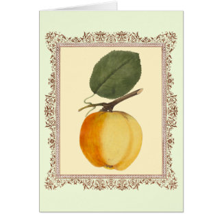 The Perfect Apple - Antique German Illustration Card