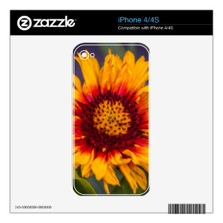 The perfect Day Decals For iPhone 4