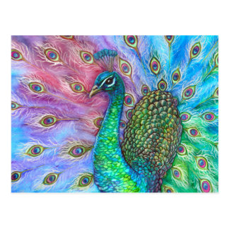 The Perfect Peacock. Postcard