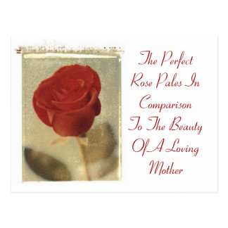 The Perfect Rose vs. Mother Postcard