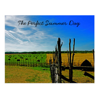 The Perfect Summer Day Postcard