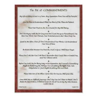 The Pet 10 Commandments for Pets=Cats, Dogs etc. Poster
