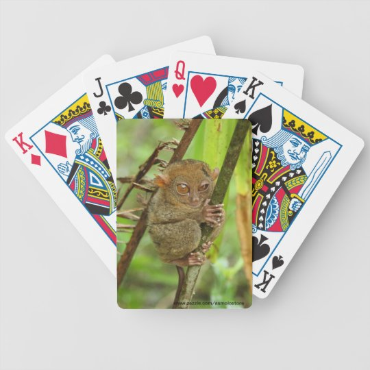 The Philippine Tarsier Playing Cards. Bicycle Playing Cards
