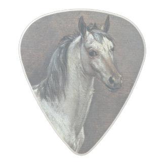 The Piebald Horse, 1653 Acetal Guitar Pick