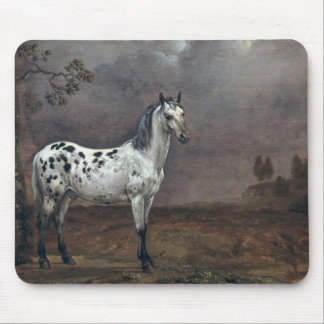 The Piebald Horse, 1653 Mouse Pad