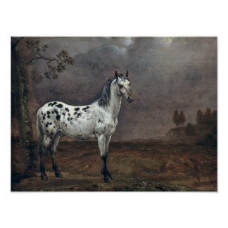 The Piebald Horse, 1653 Poster