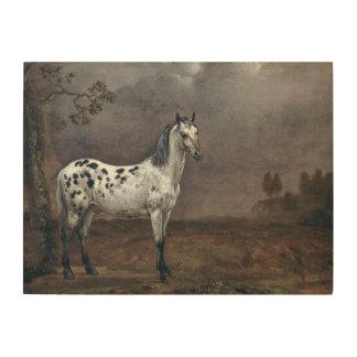 The Piebald Horse, 1653 Wood Print