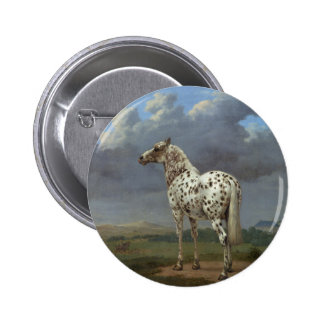 The Piebald Horse Pinback Button