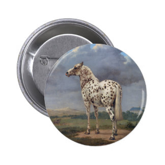 The Piebald Horse Pins