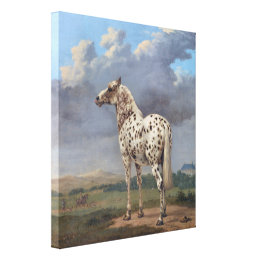 The Piebald Horse Canvas Print