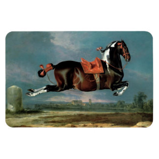 "The Piebald Horse ""Cehero' Rearing Monogram Magnet"
