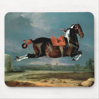The piebald horse 'Cehero' rearing Mouse Pad