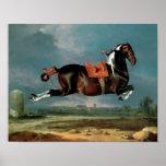 The piebald horse 'Cehero' rearing Poster