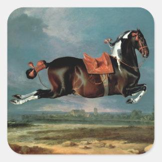 The piebald horse 'Cehero' rearing Square Sticker