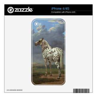 The Piebald Horse Decals For iPhone 4