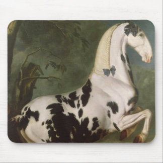 The Piebald Stallion at the Eisgruber Stud Mouse Pad
