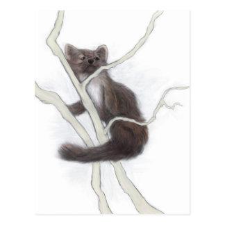 The Pine Marten Postcard