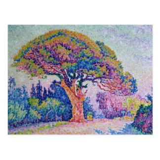 The Pine Tree at St. Tropez, 1909 Postcard