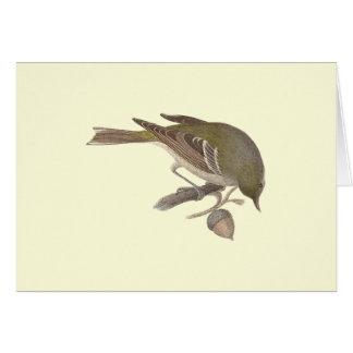 The Pine Warbler (Sylvicola pinus) Greeting Card