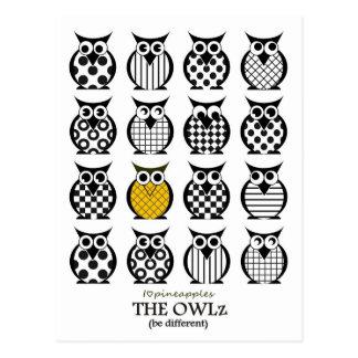 The Pineapple- Owl Postcard