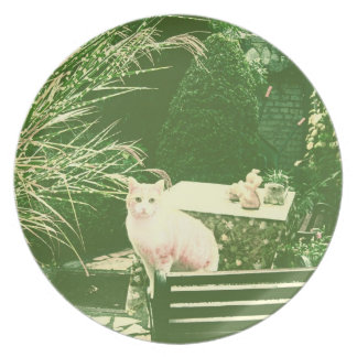 The pink cat dinner plates