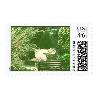 The pink cat stamp