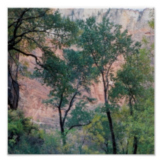 The Pink Cliffs at Zion Poster