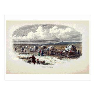 The Pioneers Vintage Print Postcard