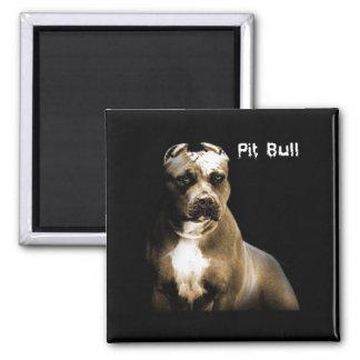 The PITbull 2 Inch Square Magnet