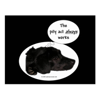 The Pity Act Always Works Postcard