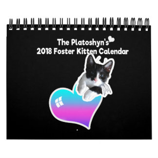 The Platoshyn's 2018 Foster Kitten Calendar