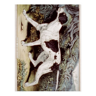 The pointer Oil Painting Greeting Cards